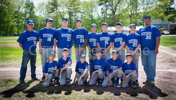 Northville Modified Baseball and Softball Spring 2014
