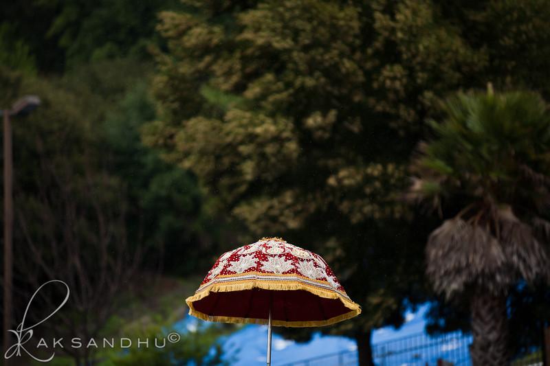 Wedding {Baraat}