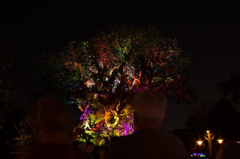 161213, Disney trip 365.jpg