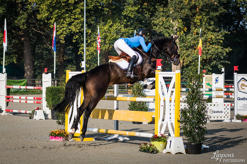 Elodie PATENOTTE (FRA), ABSOLUT GOLD (202)