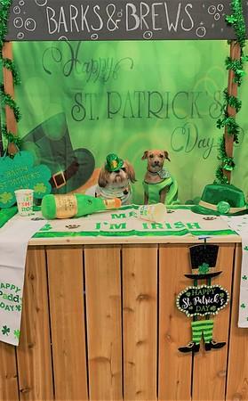 St. Patrick's day 2020!!