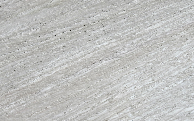 Isabelle Glacier 2017 (153).JPG