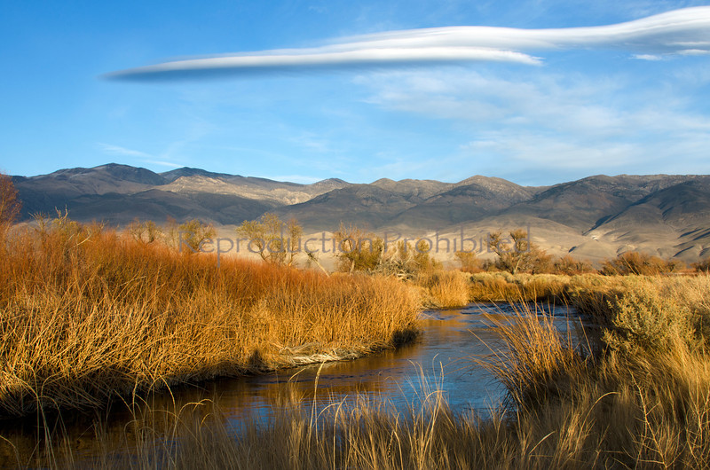 Cloud River Owens River, Eastern Sierra, California December 2012