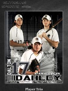 Stallions Baseball 2015