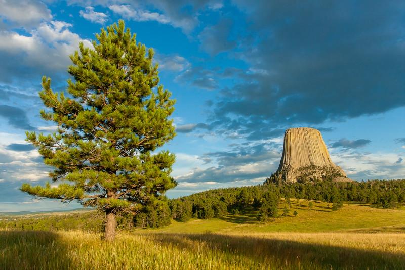 Yellowstone to Mount Rushmore - August 2010