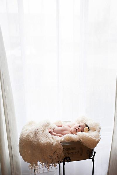 Hillary_Ferguson_Photography_Carlynn_Newborn185.jpg