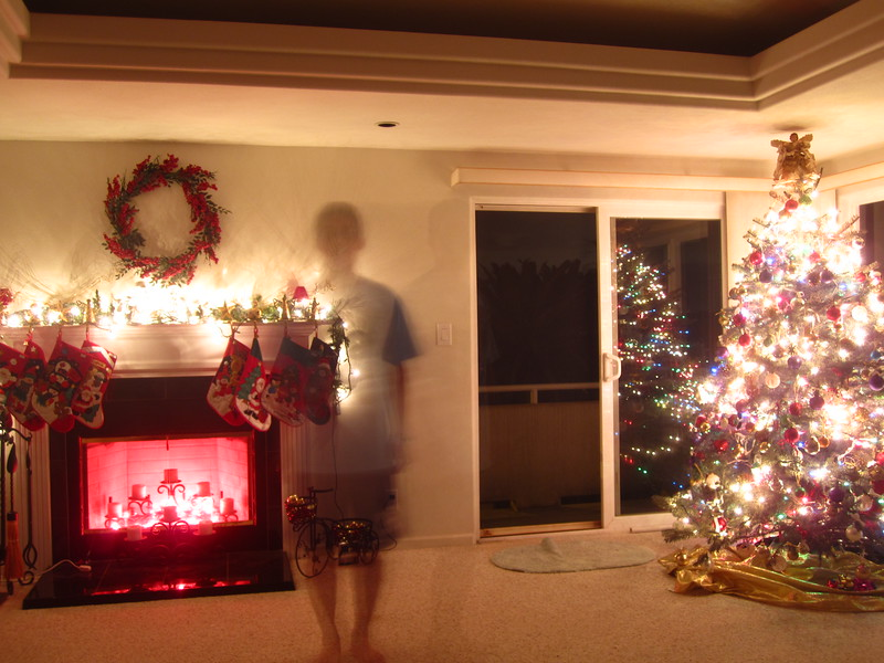 Hawaii - Playing with Light Christmas-1.JPG