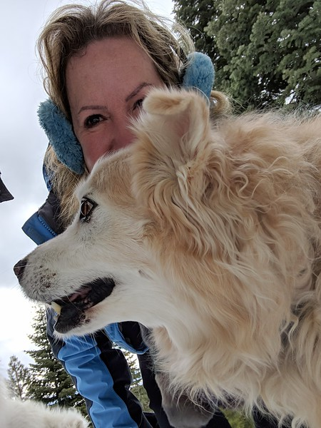 2019-03-21-0005-Trip to Tahoe with Dogs-Lake Tahoe-Debby-Leo the Dog.jpg