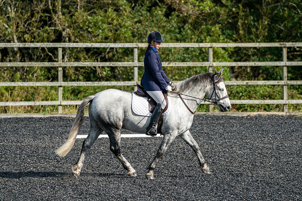 Dressage and Jumping 30 August 2020
