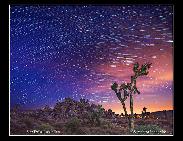 Star Trails Joshua Tree Keys rd .jpg