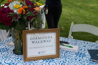 Diamonds Brick Walkway