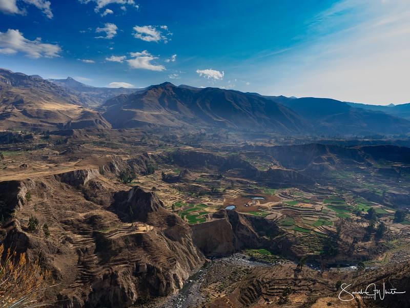 Peru-15102019-318.jpg