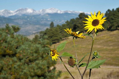 2013 09 25 Idaho Springs, CO - Mt. Evans , CO