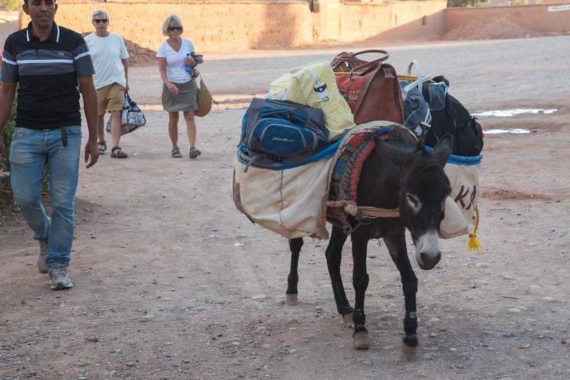 160925-124648-Morocco-0570.jpg