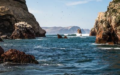 Pérou - J3 - Islas Ballestas