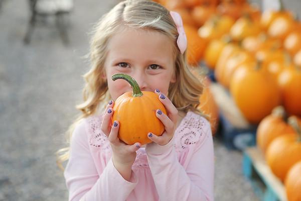 pumpkin days