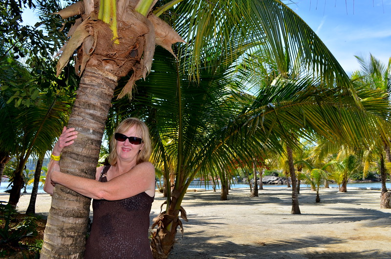 Kathy hugging a palm tree.