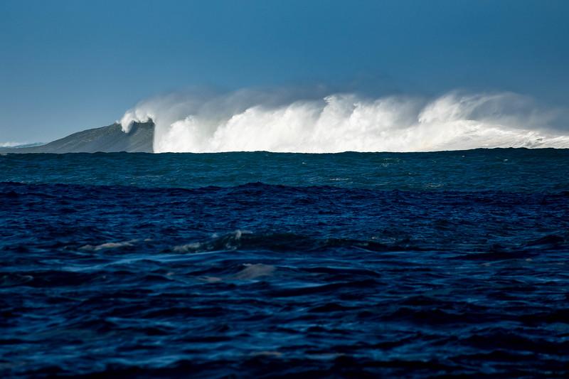 surfing kauai-10.jpg