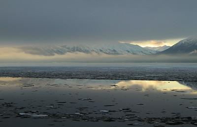 Seward Polar Bear Plunge 2010
