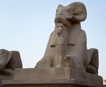 Egypt 8-29-15