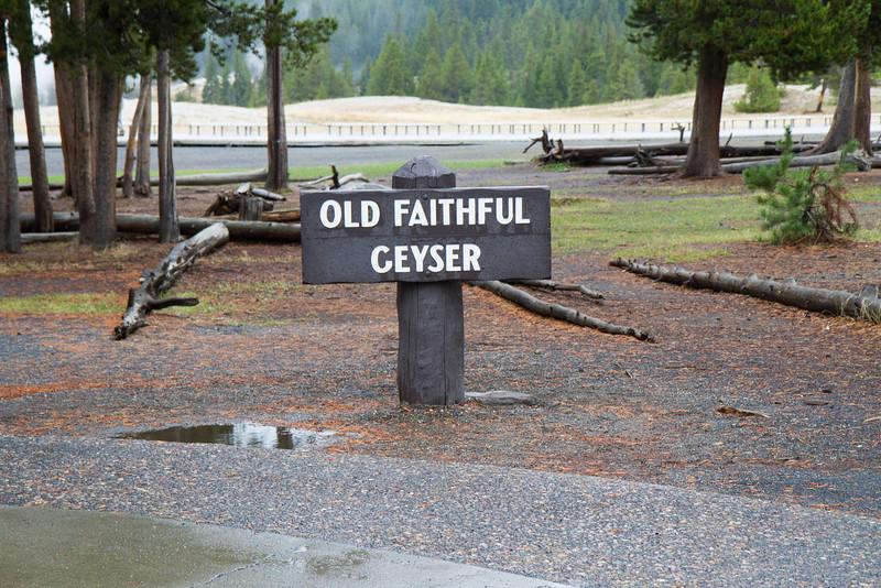 02_Yellowstone National Park_Montana_Wyoming-61.jpg