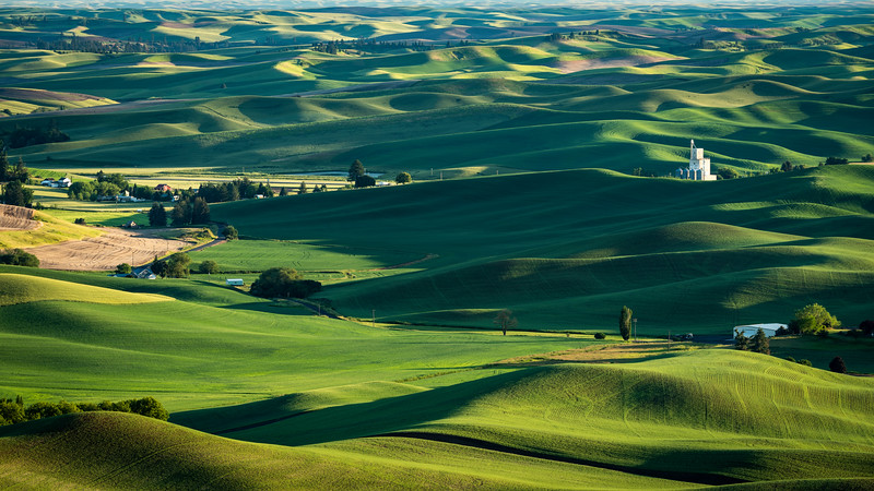 Palouse (1 of 1).jpg