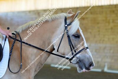 10 Karpinski & Benjamin Button 04-29-2012