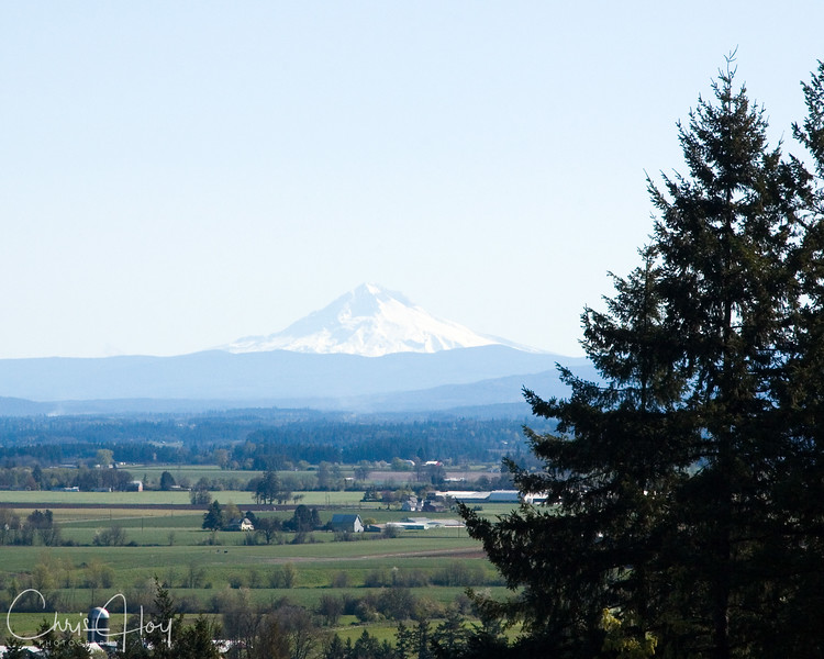 Oregon's Mt. Hood as seen from the Mt. Angel Abbey