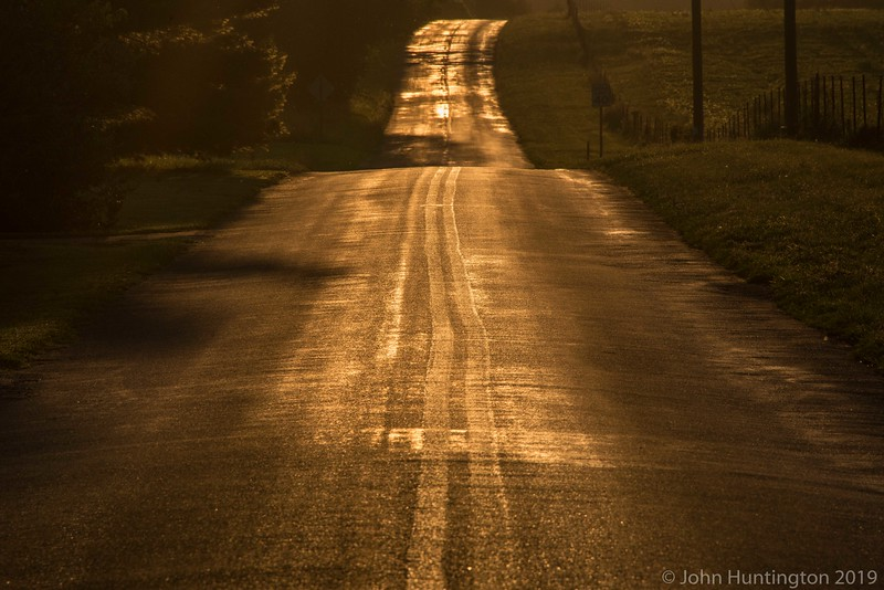 A country road backlit by sunset.