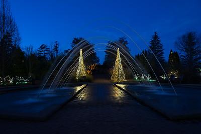 Christmas Lights at DSBG
