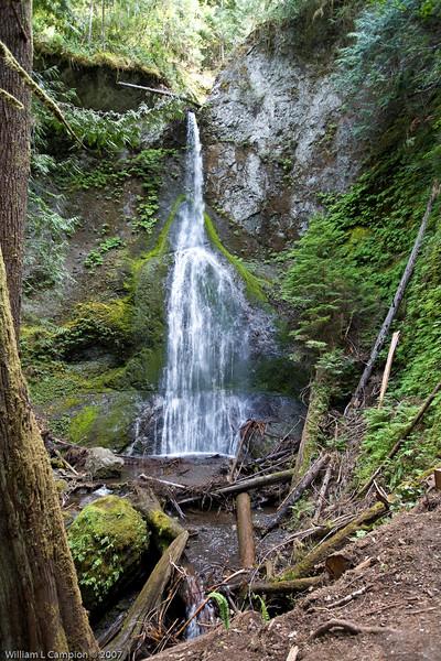 Meeramer Falls Olympic National Park