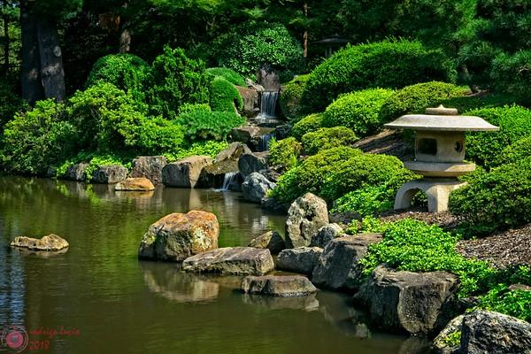 2017 - shofuso japanese garden