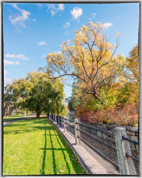 Patterson Creek Ottawa