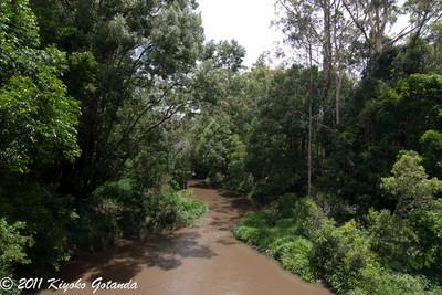 Corindi Creek*