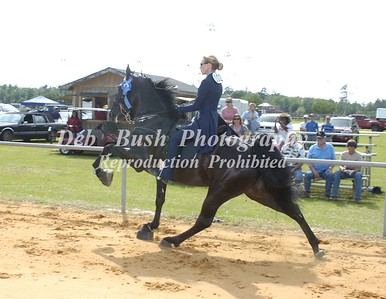 CLASS 8  WALKING 15.2 & UNDER AMATEUR SPECIALTY