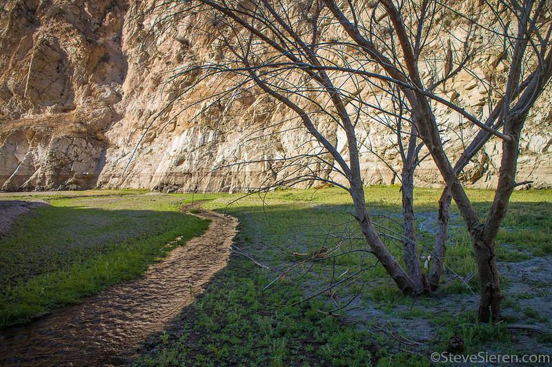 White_Oak_Canyon_San_Gabriel_Mountains_Los_Angeles_California-16.jpg
