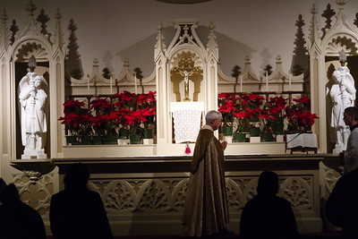 Candlemas TLM at St. Thomas Aquinas Church (Palo Alto, CA)