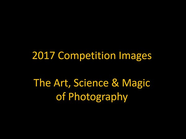 2017 Photo Competition