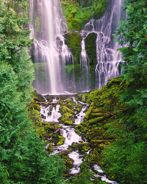 Lower Proxy Falls sf.jpg