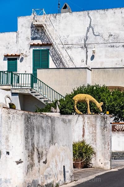 Naples & Procida all-454.jpg