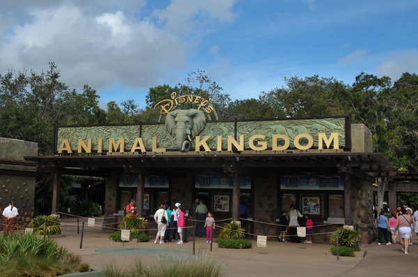 2012 Animal Kingdom