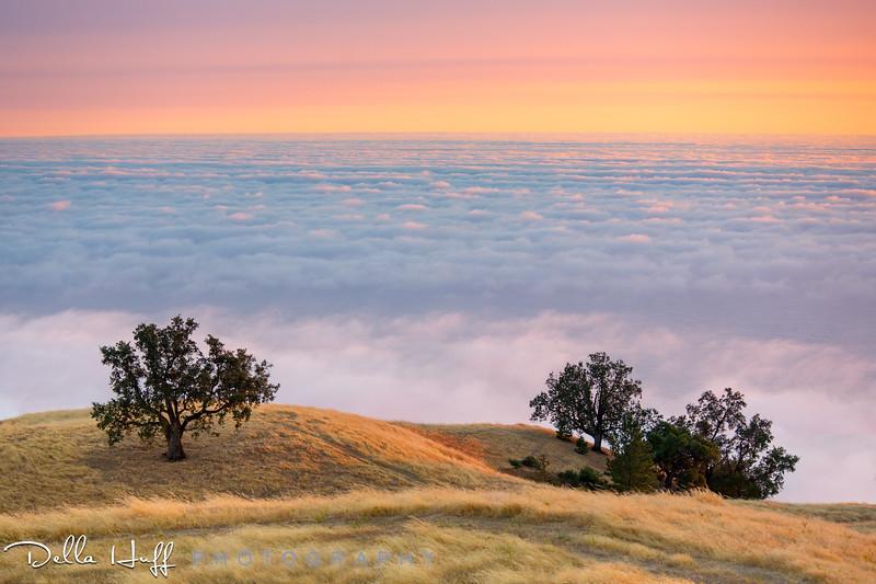 Heaven Above, Big Sur, California