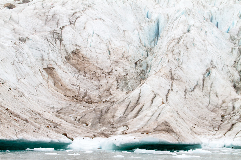 Rotting Ice I
