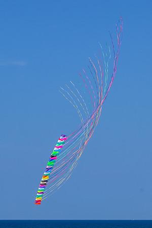 Kites in Kolor