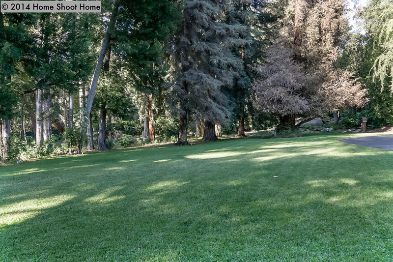 2319_113front-lawns-side-view.jpg