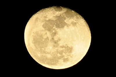 """""""There's a Moon Out Tonight"""""""