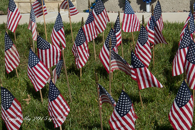 Memorial day 5-25-15