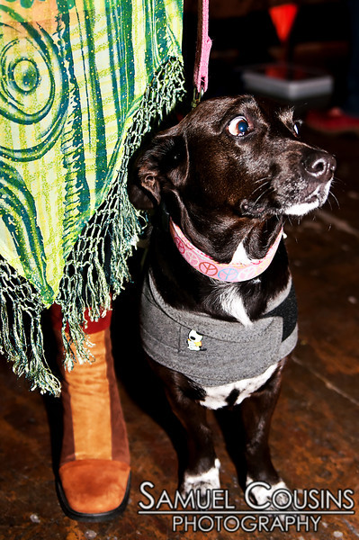 What the hell was that?!