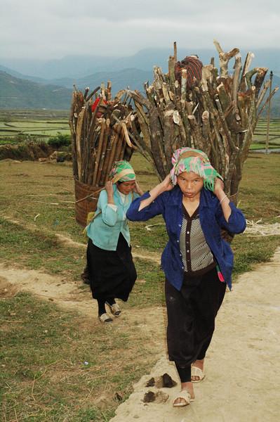 Vietnam 2008-081.jpg