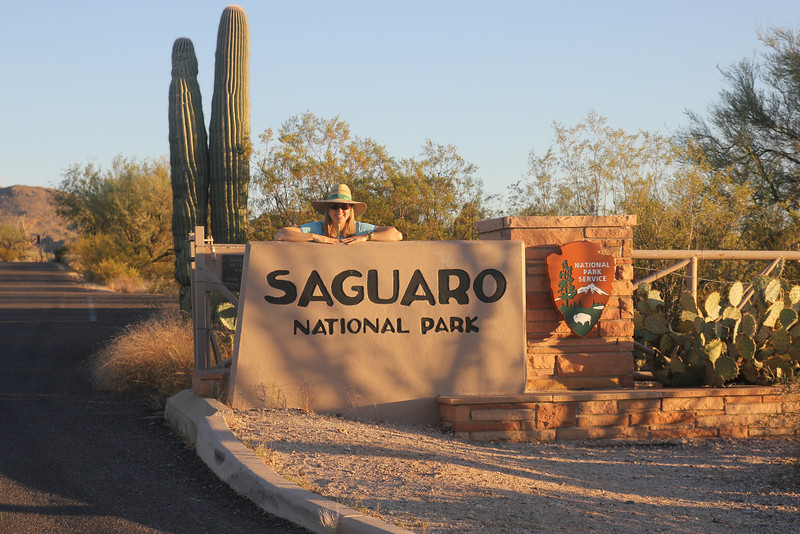 Saguaro National Park - Our trip to Arizona started of course at Saguaro National Park.  We were only on the ground for a couple of hours before heading out with Uncle Fred to the Park in his convertible. He has lifetime pass and lives across the street from the Park!
